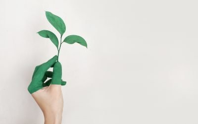 Embedding Sustainability is Critical to Every Enterprise
