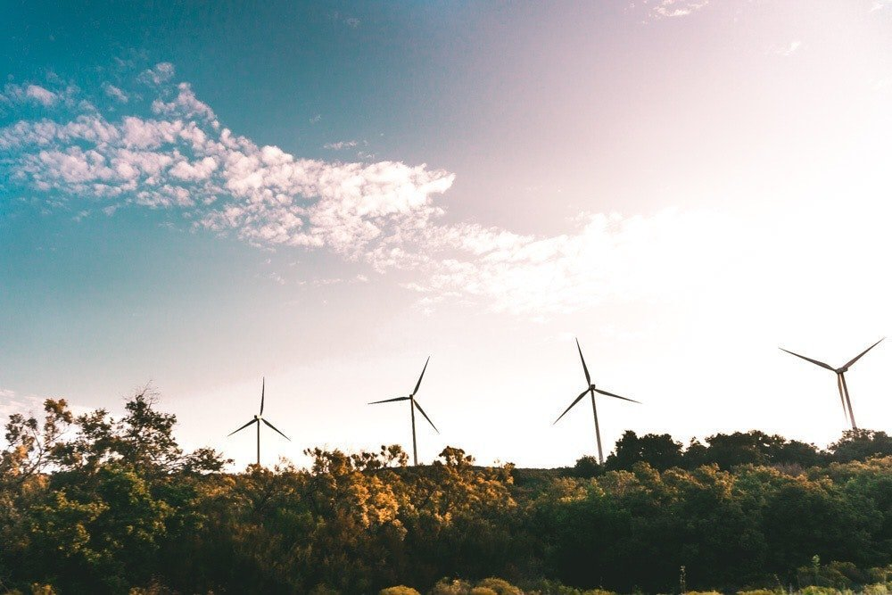 Why renewable energy should be part of your future-proof business strategy